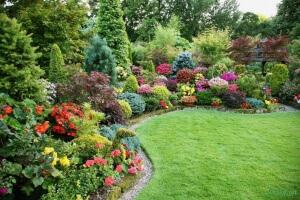 Оформление сада декоративными кустарниками