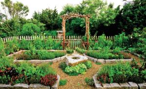 Огород похож на садик