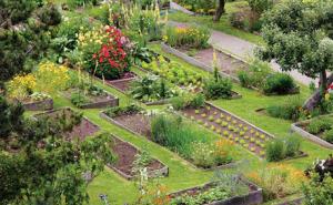 Красота участка зависит от грамотного земледелия