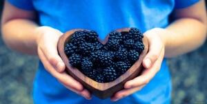 Одна ягода ежевики весит 14 грамм при длине 4,5 см!