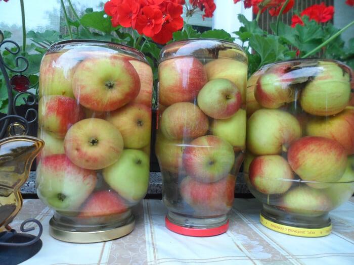 Из плодов колоновидных яблонь делается очень много заготовок