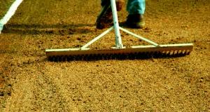 Почва для посадки должна быть рыхлой