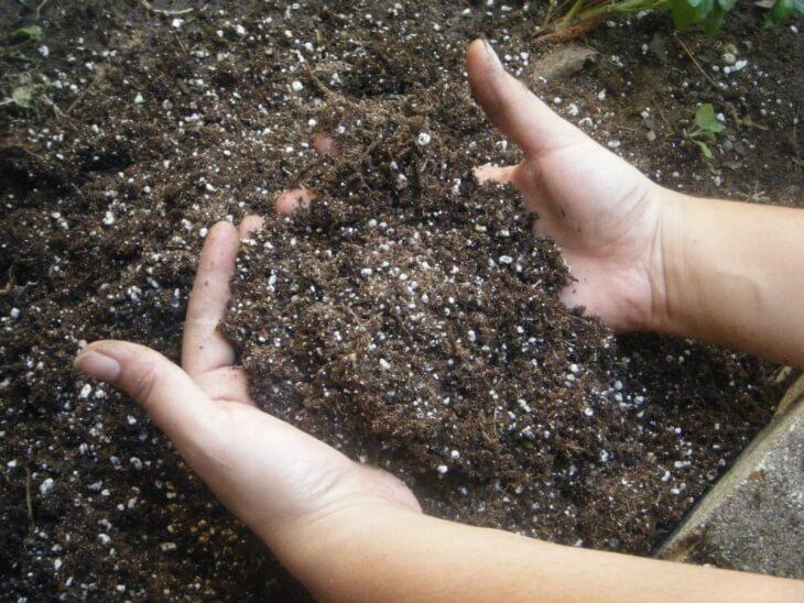Азот является очень важным компонентом для почвы