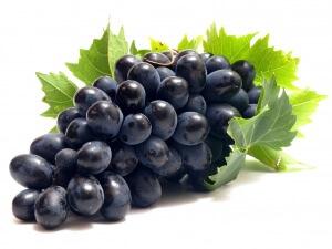 Некоторые сорта винограда могут выдерживать температуры до -28