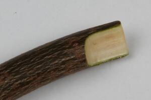 Секатор для прививки деревьев: как выбрать удобный и функциональный инструмент