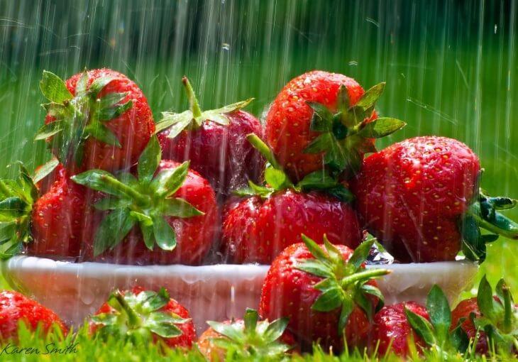 С конца июля по сентябрь закладывается основа для урожая на следующий год