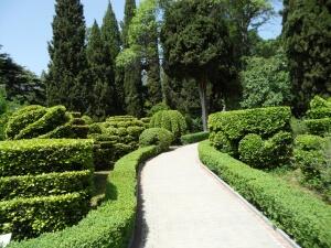 Кустарники помогают огородить внешнюю сторону