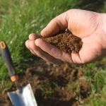 Прибор для измерения кислотности почвы: необходимый инструмент садовода