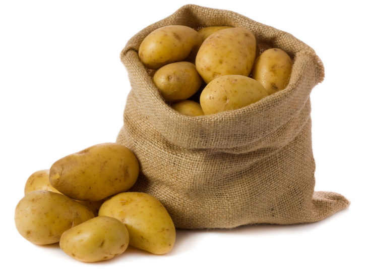 Урожай картофеля после посадки семенами
