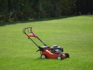 Уход за газоном с помощью газонокосилки