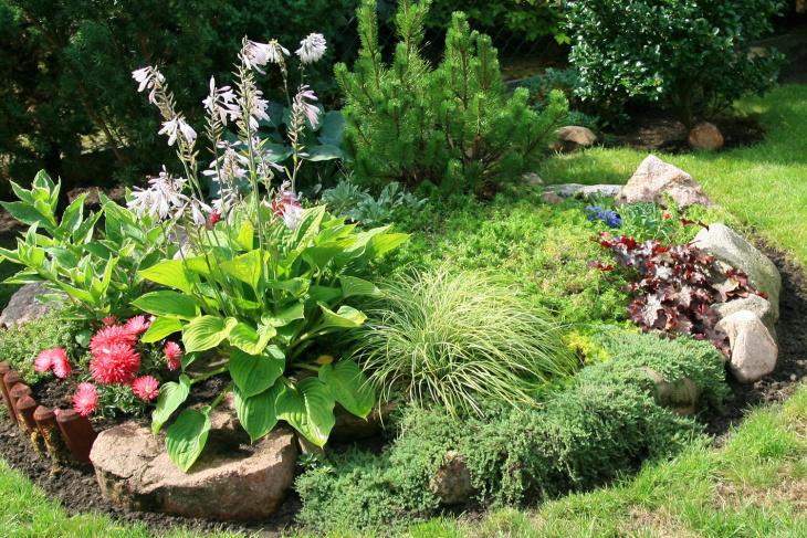 Рокарий в саду