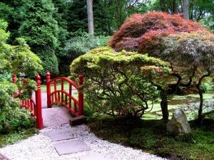 Тихое место на дачном участке с хвойными растениями