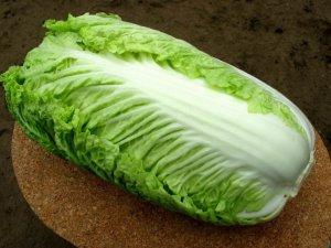 Здоровый урожай пекинской капусты