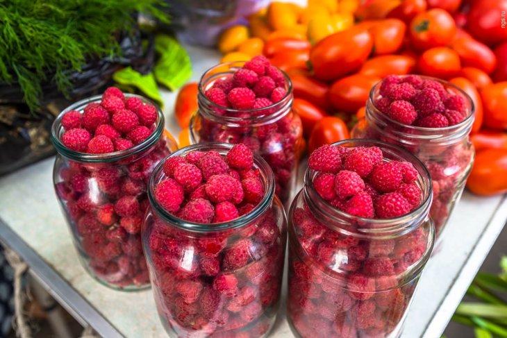 Собранный урожай малины