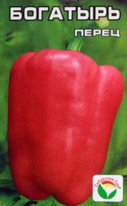 Особенности сорта перца «Богатырь» и его агротехнические требования