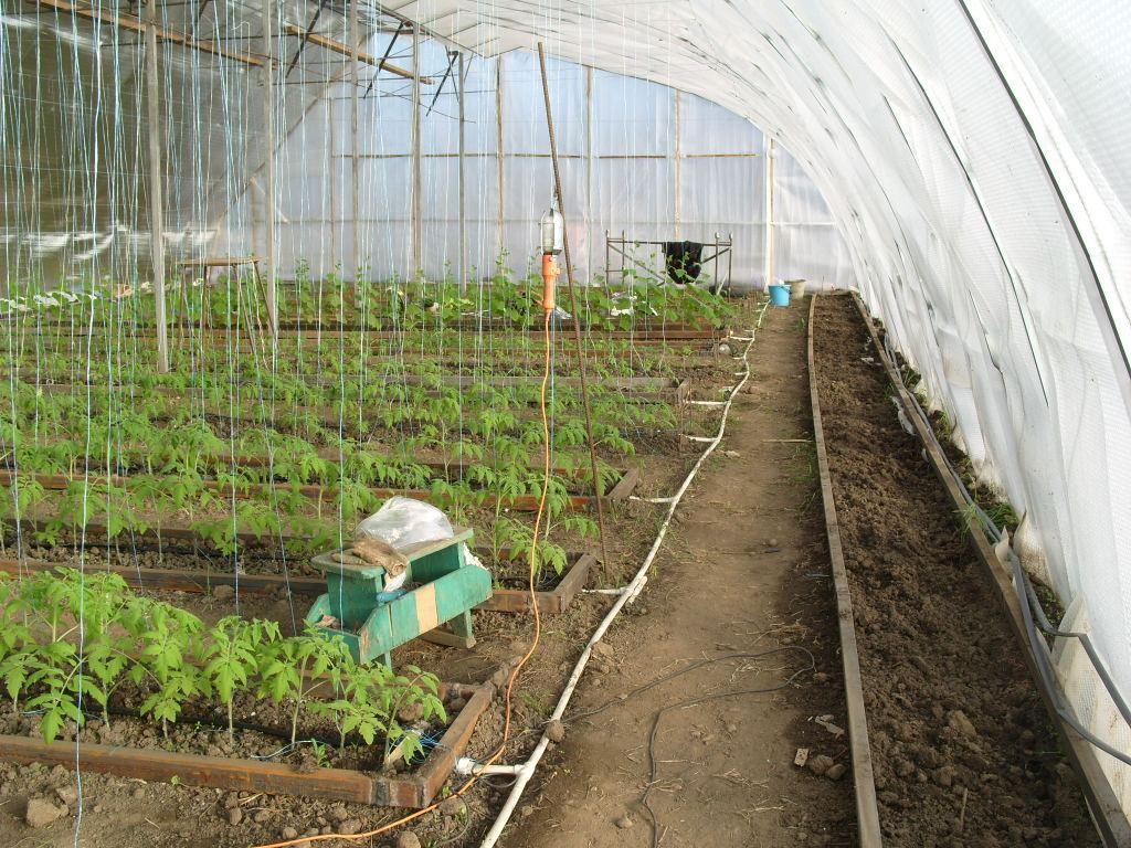 Обогрев теплицы из поликарбоната: как это происходит и что нужно знать садоводу