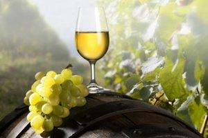 Разные сорта винограда могут повлиять на вкус вина