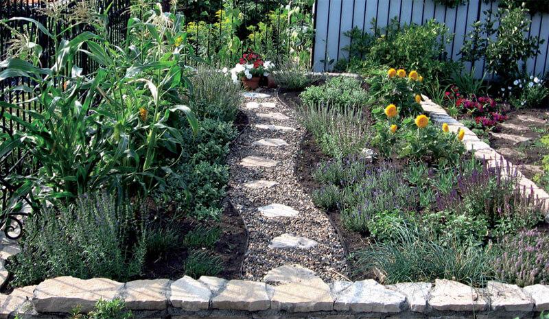 доступ как красиво посадить пряную траву на саду фото плетения новогодних украшений