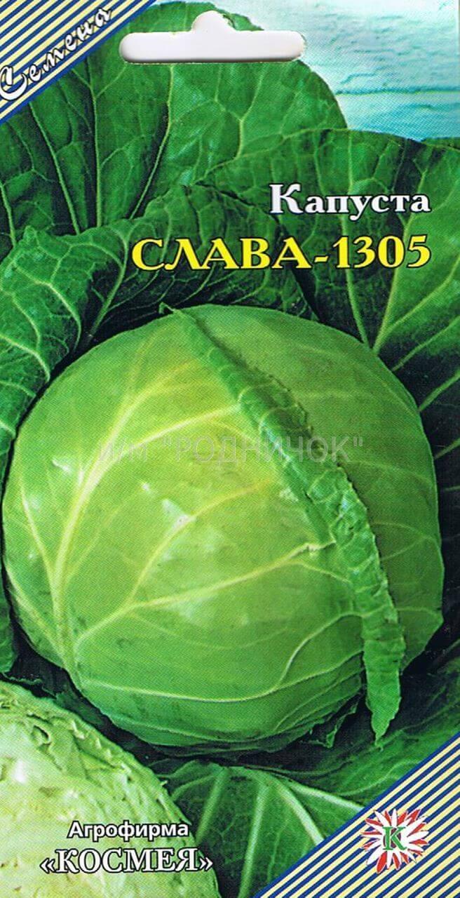 Капуста Слава 1305: отзывы и правила выращивания