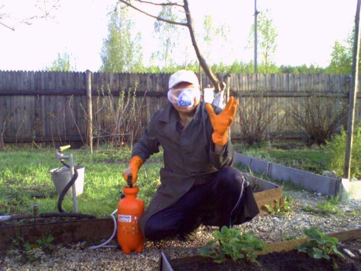 При обработке растений, нужно тщательно обезопасить себя