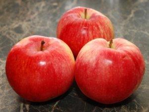Плоды яблони Услада