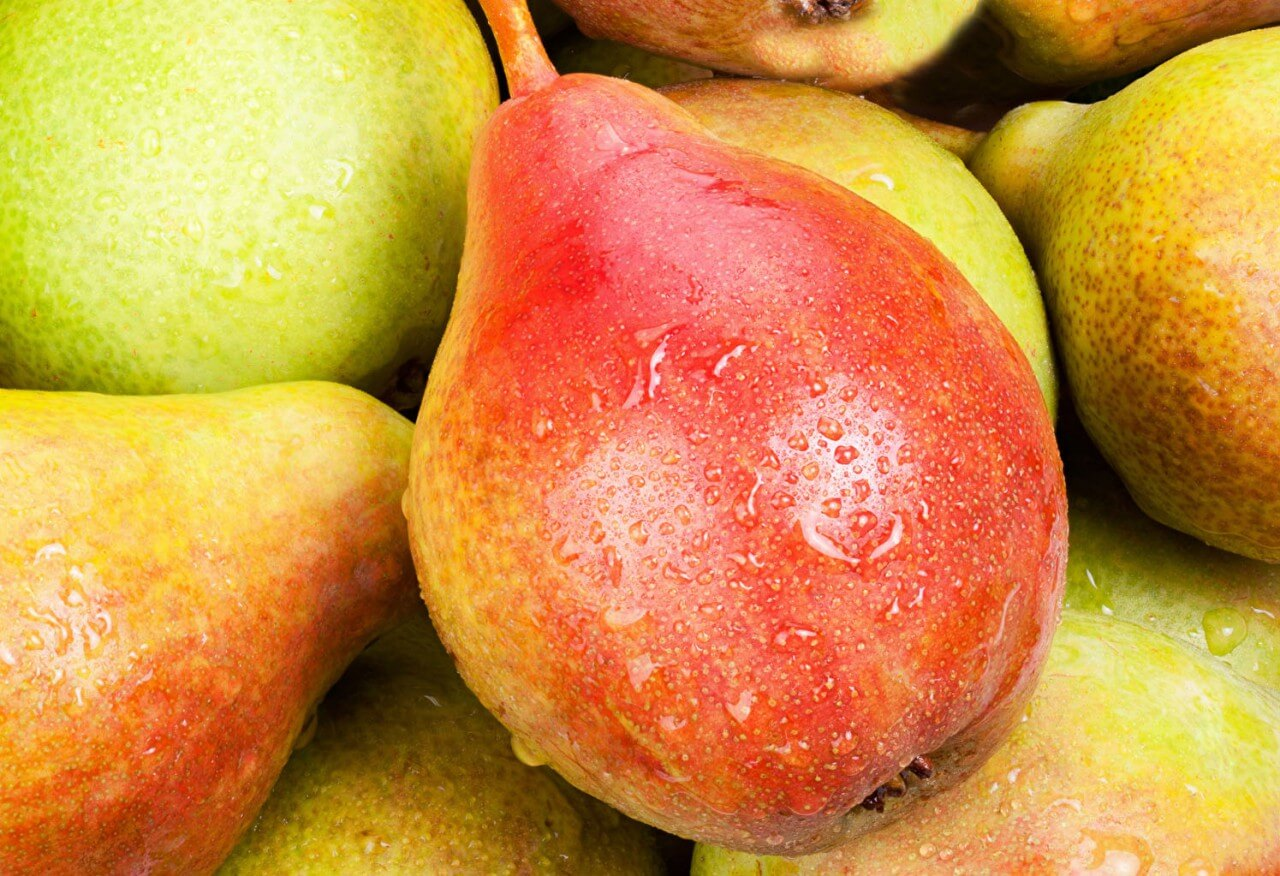 Variety of pears pictures Eating and Baking Pears - When to Use Which Pear