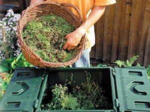В компост можно добавлять траву