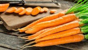морковь морозостойкая