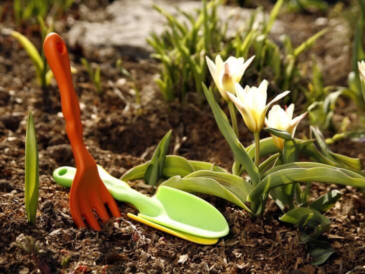 Янтарная кислота способствует нормализации микрофлоры почвы