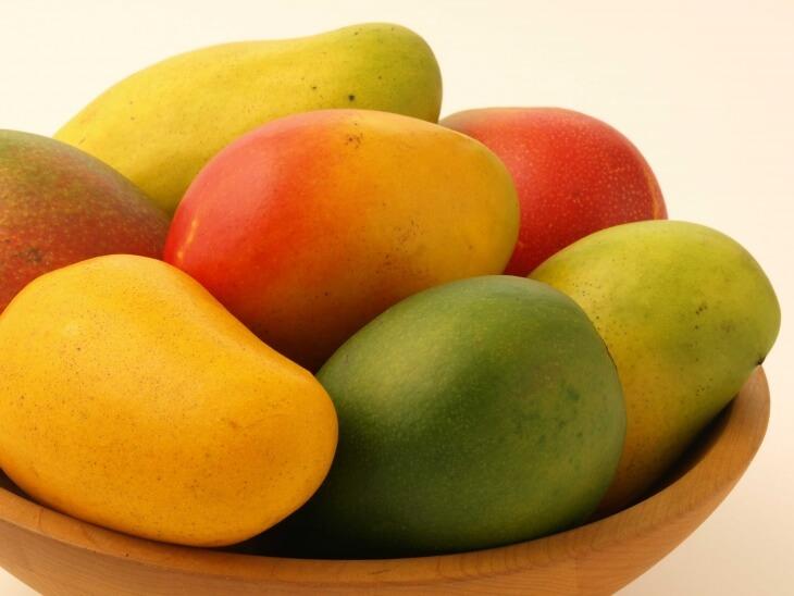 При размножении манго путем посадки семечек нужно выбрать спелый, мягкий и ароматный плод