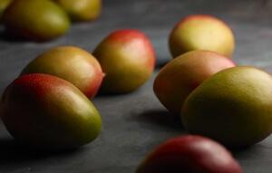 Семя манго должно быть белого цвета. Семена других цветов скорее всего не прорастут