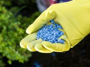Перед использованием удобрений оцените состояние почвы