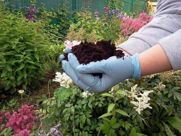 Кислотность почвы можно определить даже с помощью лопаты