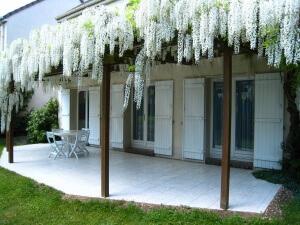 Дом, украшенный глицинией