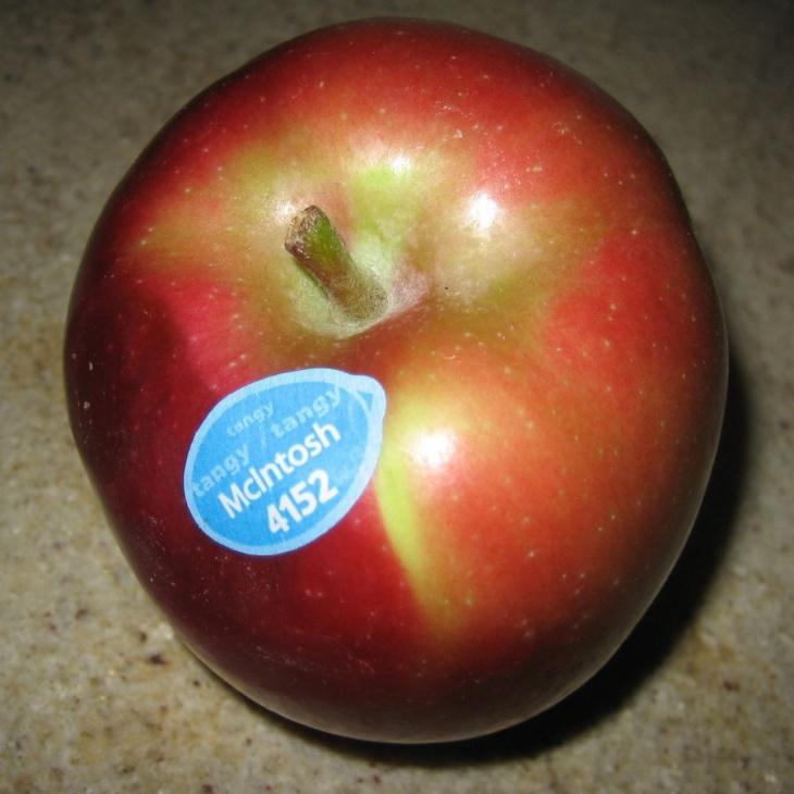 Яблоко сорта Макинтош