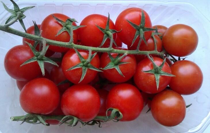 Плоды детерминантных томатов