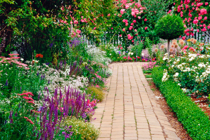 Украшение сада с помощью цветущих растений