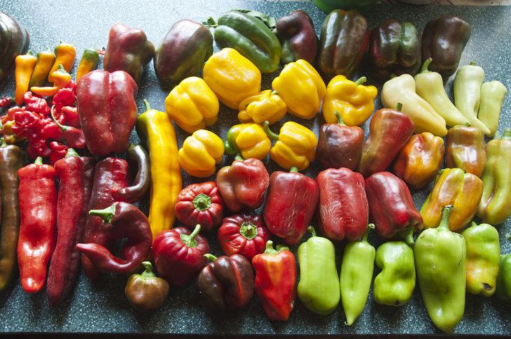 Разновидности перца