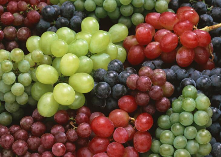 Различные сорта винограда