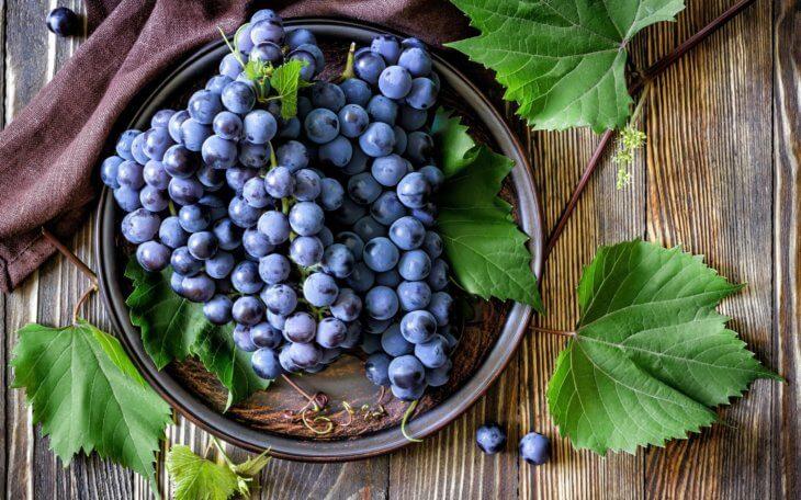 Здоровый урожай винограда