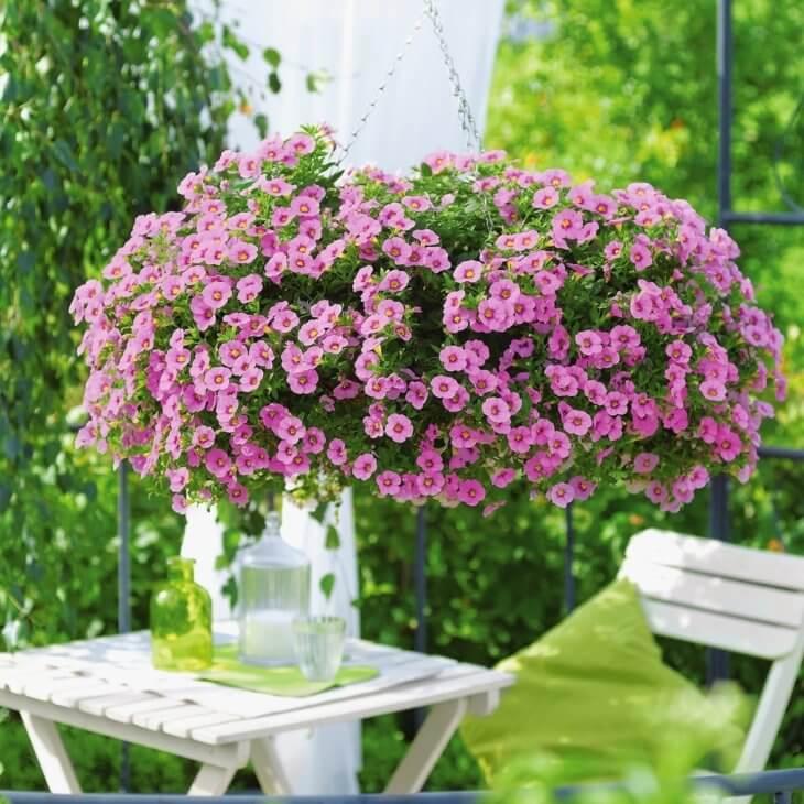 Прекрасное украшение садовой территории яркими цветами