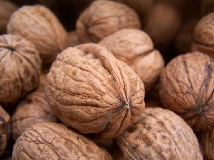 Плоды ореха