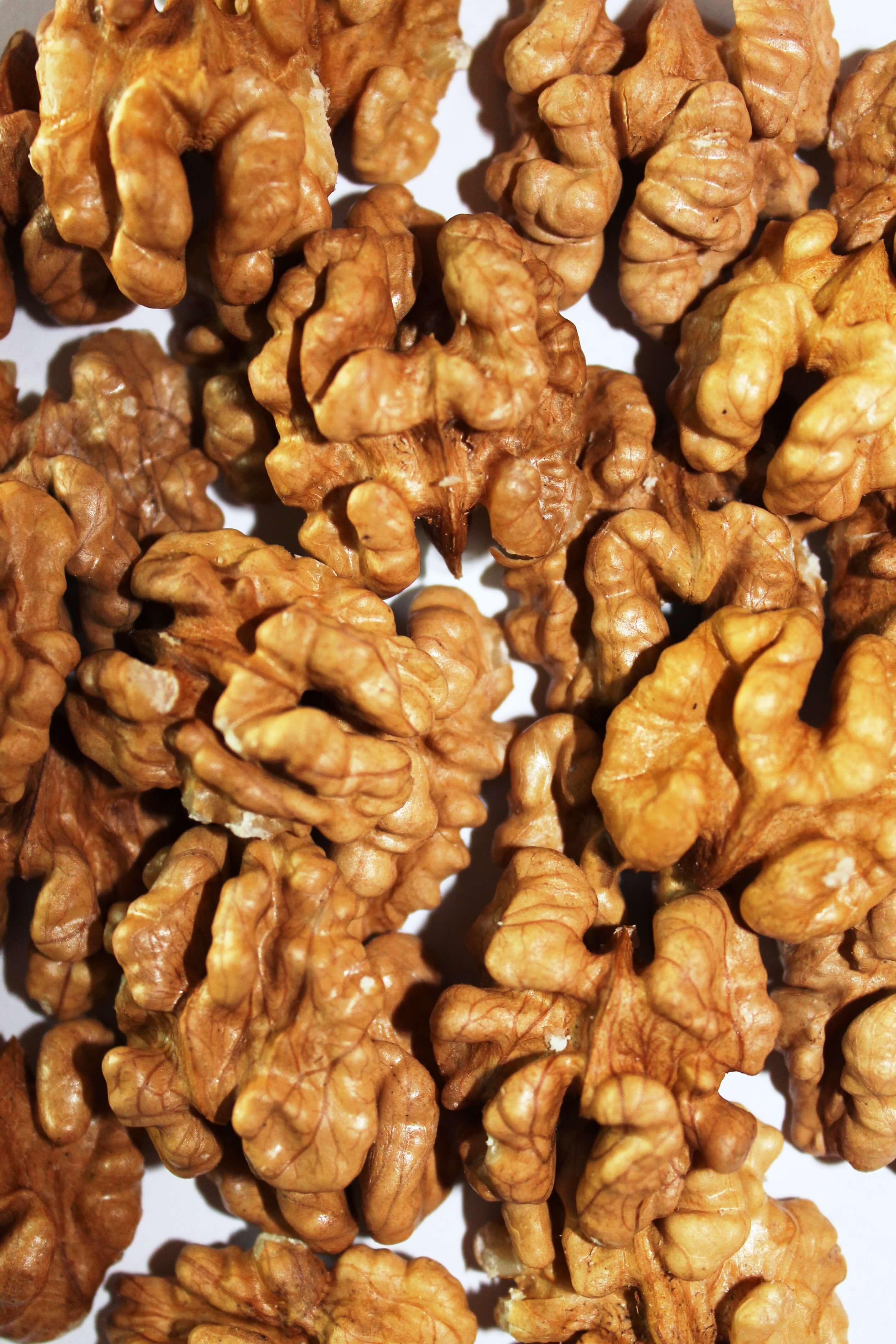 Основные правила посадки грецкого ореха в осенний период