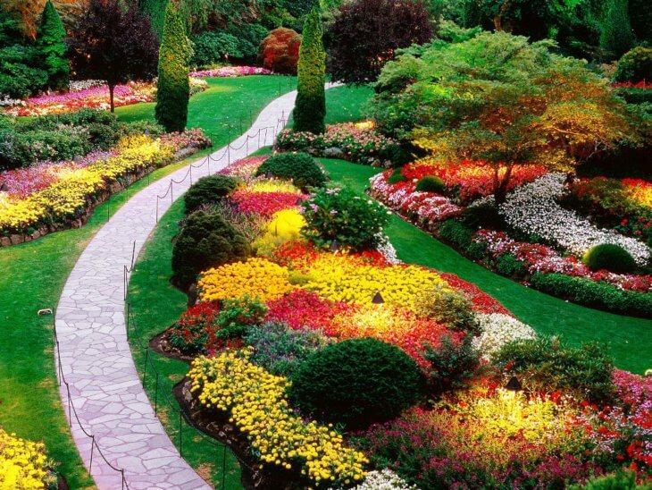 Украшение территории сада с помощью многолетних растений