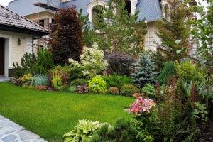 Небольшие кустарники освежат дизайн любого садового участка