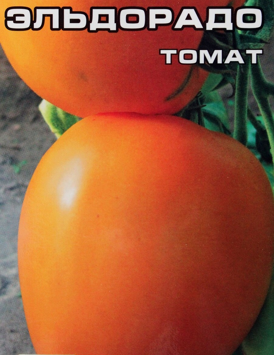 Томат Эльдорадо, особенности выращивания